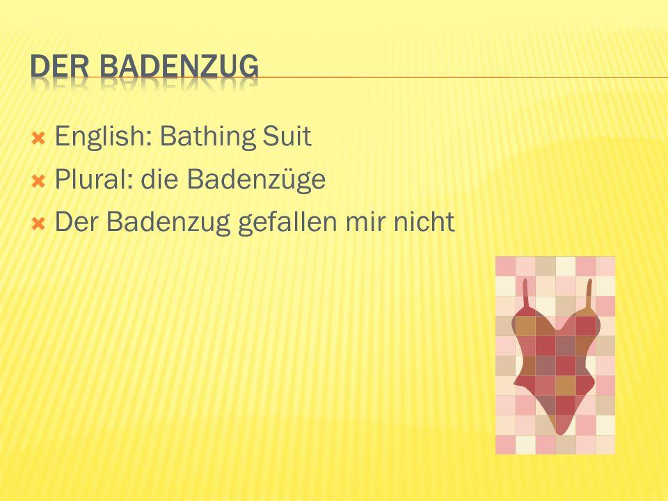 English: Bathing Suit Plural: die Badenzüge Der Badenzug gefallen mir nicht