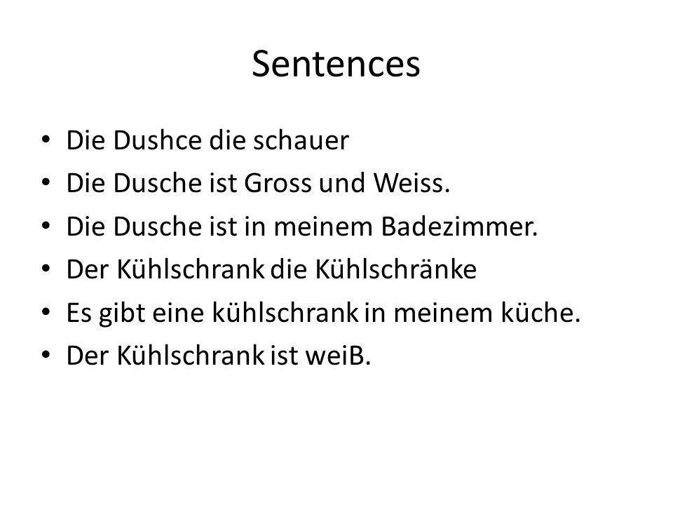 Sentences Die Dushce die schauer Die Dusche ist Gross und Weiss.