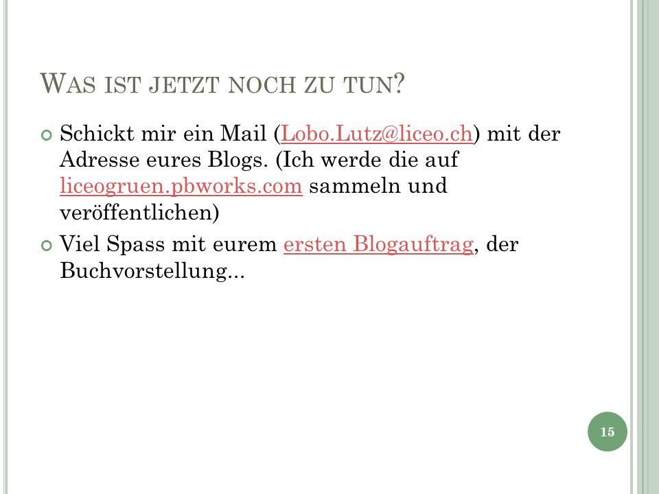 W AS IST JETZT NOCH ZU TUN ? Schickt mir ein Mail (Lobo.Lutz@liceo.ch) mit der Adresse eures Blogs. (Ich werde die auf liceogruen.pbworks.com sammeln