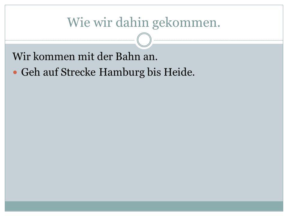 Wie wir dahin gekommen. Wir kommen mit der Bahn an. Geh auf Strecke Hamburg bis Heide.