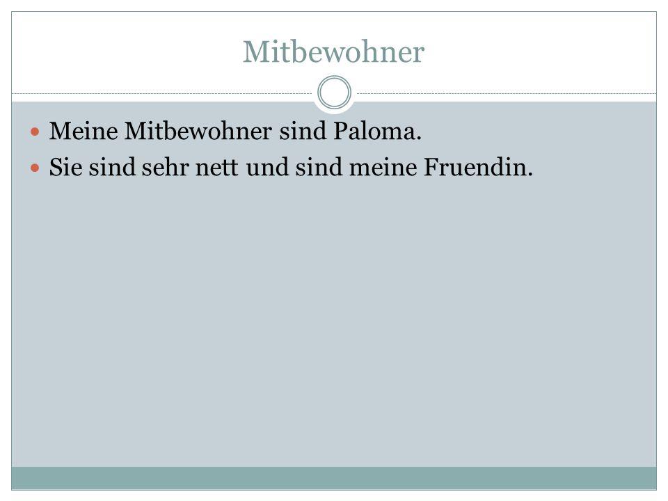 Mitbewohner Meine Mitbewohner sind Paloma. Sie sind sehr nett und sind meine Fruendin.