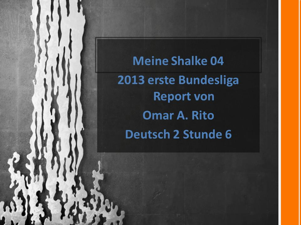 Meine Shalke 04 2013 erste Bundesliga Report von Omar A. Rito Deutsch 2 Stunde 6