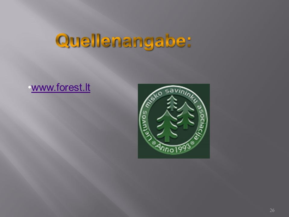 www.forest.lt 26