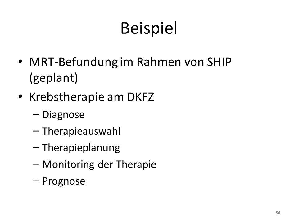 Beispiel MRT-Befundung im Rahmen von SHIP (geplant) Krebstherapie am DKFZ – Diagnose – Therapieauswahl – Therapieplanung – Monitoring der Therapie – Prognose 64