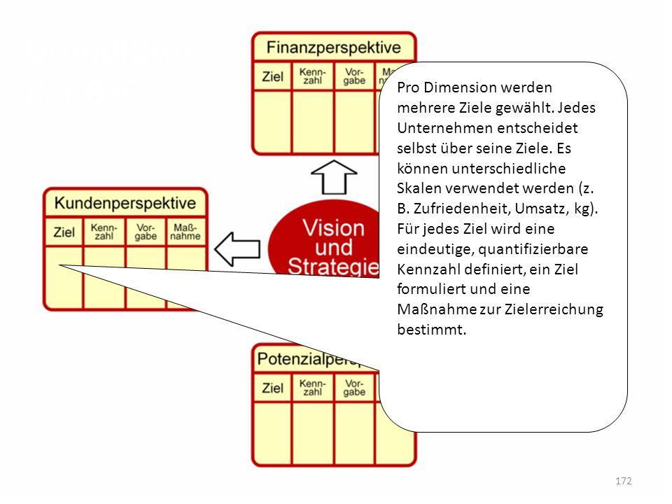 Grundform der BSC Pro Dimension werden mehrere Ziele gewählt. Jedes Unternehmen entscheidet selbst über seine Ziele. Es können unterschiedliche Skalen