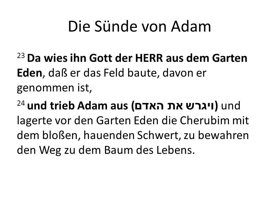 Die Sünde von Adam 23 Da wies ihn Gott der HERR aus dem Garten Eden, daß er das Feld baute, davon er genommen ist, 24 und trieb Adam aus ( ויגרש את האדם ) und lagerte vor den Garten Eden die Cherubim mit dem bloßen, hauenden Schwert, zu bewahren den Weg zu dem Baum des Lebens.