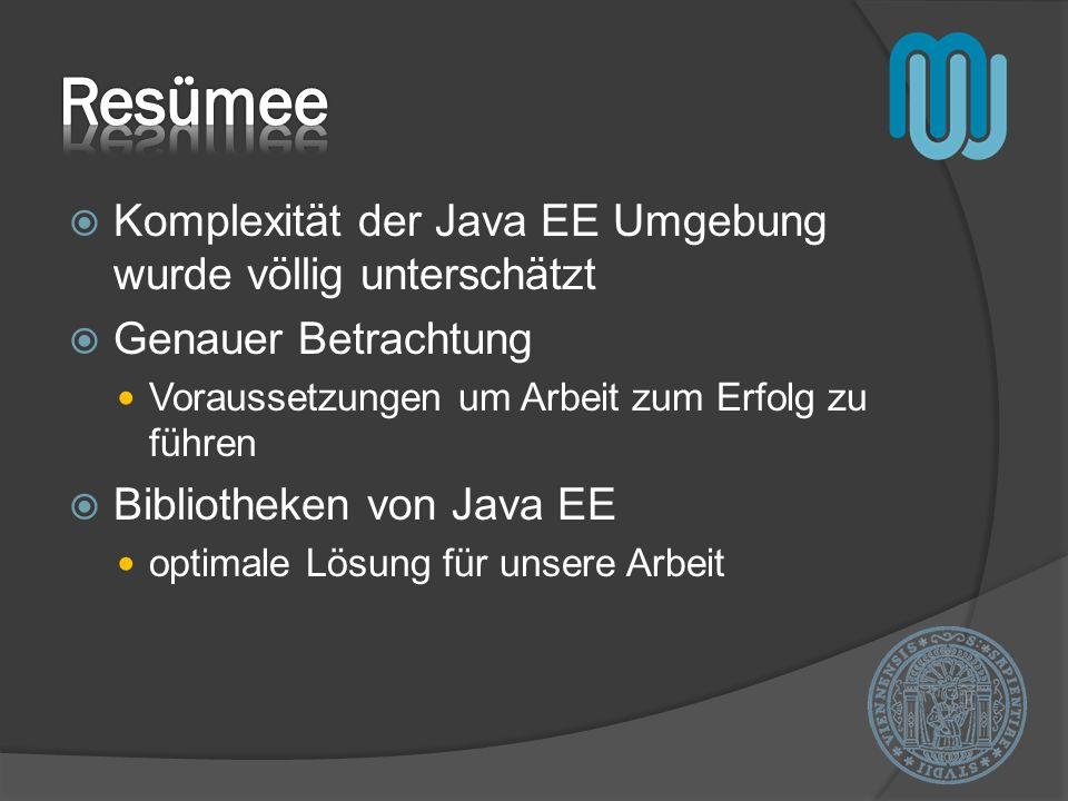 Komplexität der Java EE Umgebung wurde völlig unterschätzt Genauer Betrachtung Voraussetzungen um Arbeit zum Erfolg zu führen Bibliotheken von Java EE