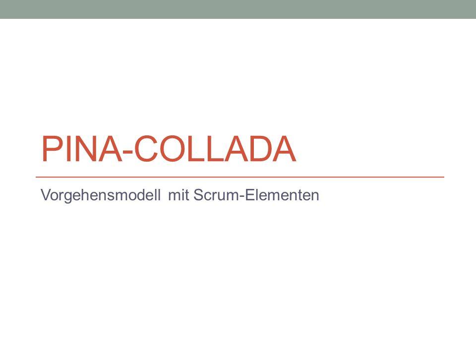PINA-COLLADA Vorgehensmodell mit Scrum-Elementen