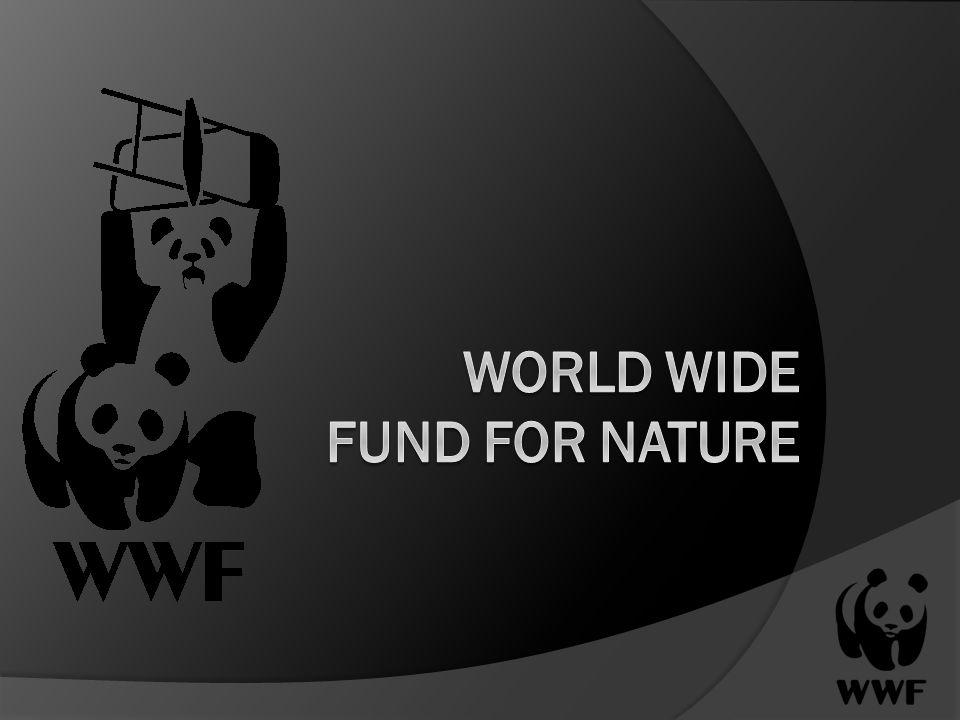 Gliederung 1.Was ist der WWF. 2. Ziele 3. Geschichte und Entstehung 4.