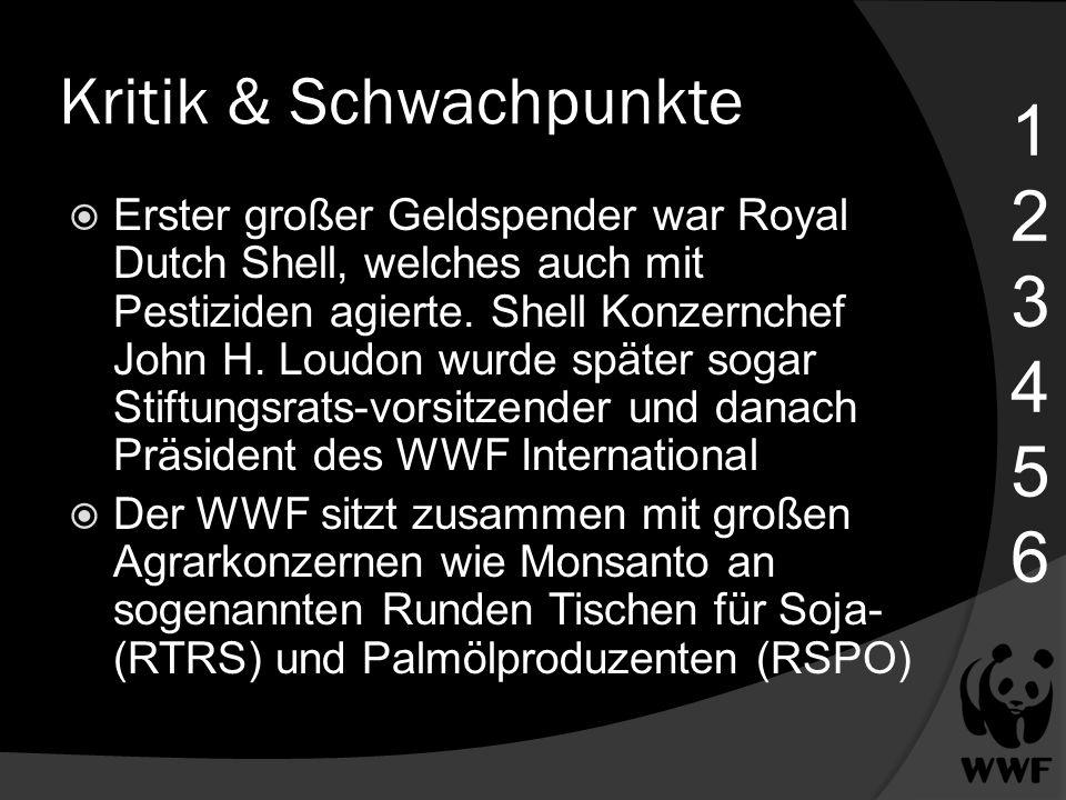 Kritik & Schwachpunkte Erster großer Geldspender war Royal Dutch Shell, welches auch mit Pestiziden agierte. Shell Konzernchef John H. Loudon wurde sp