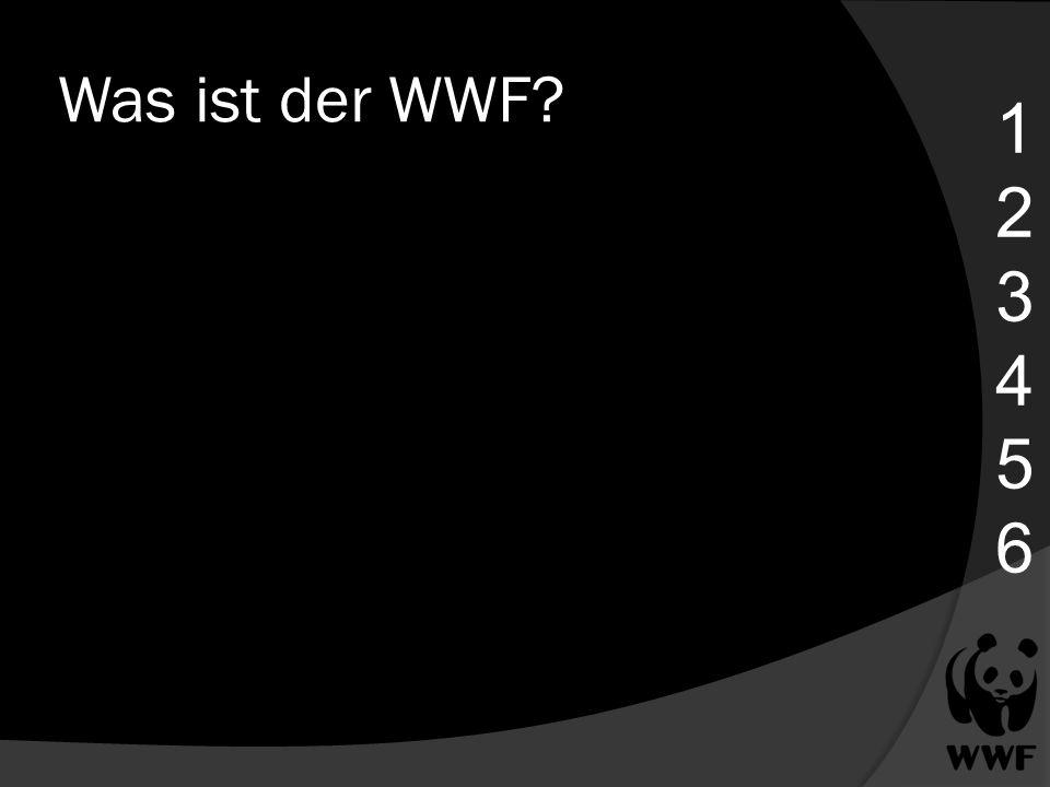 Was ist der WWF? 123456123456