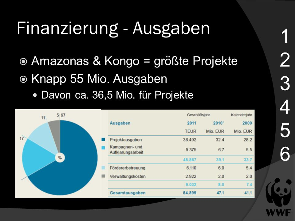 Finanzierung - Ausgaben 123456123456 Amazonas & Kongo = größte Projekte Knapp 55 Mio. Ausgaben Davon ca. 36,5 Mio. für Projekte