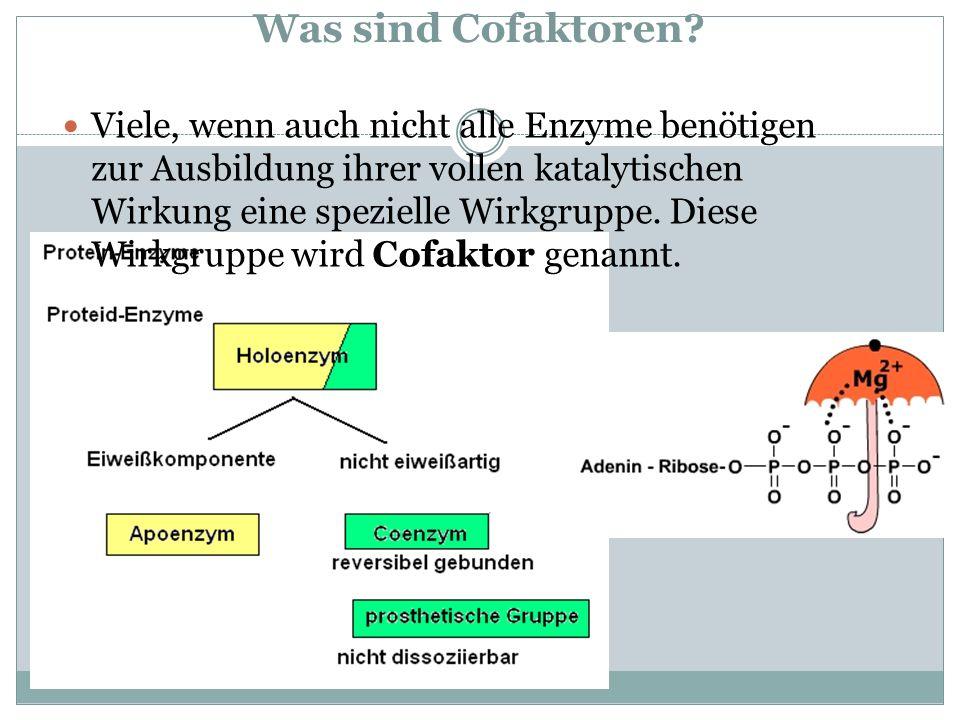 Was sind Cofaktoren? Viele, wenn auch nicht alle Enzyme benötigen zur Ausbildung ihrer vollen katalytischen Wirkung eine spezielle Wirkgruppe. Diese W