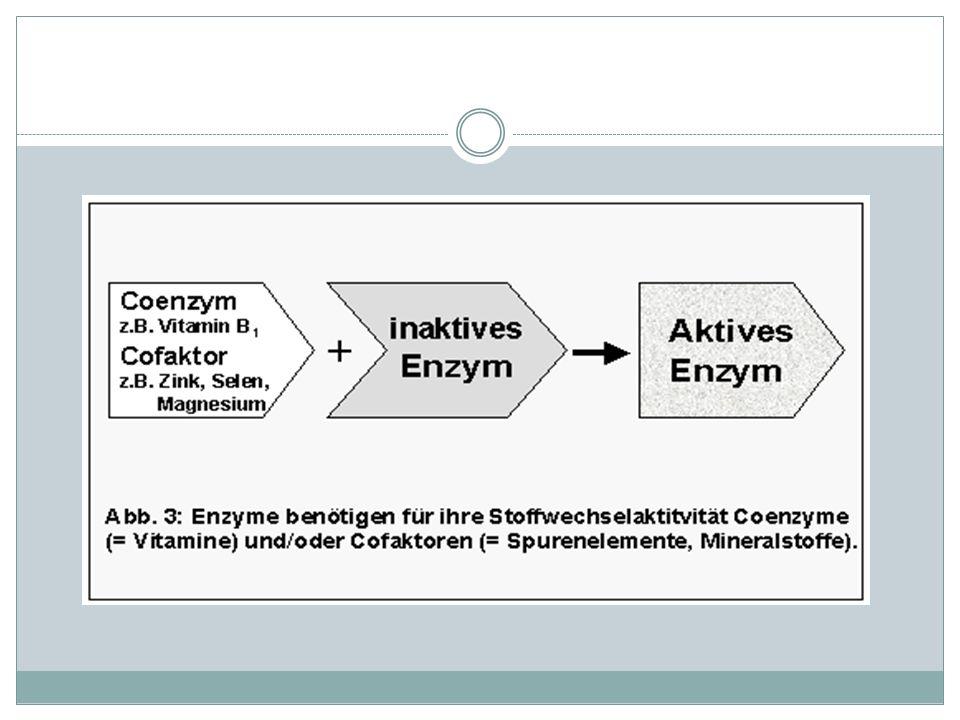 Der Begriff Cofaktor wird dabei in drei Klassen unterteilt.