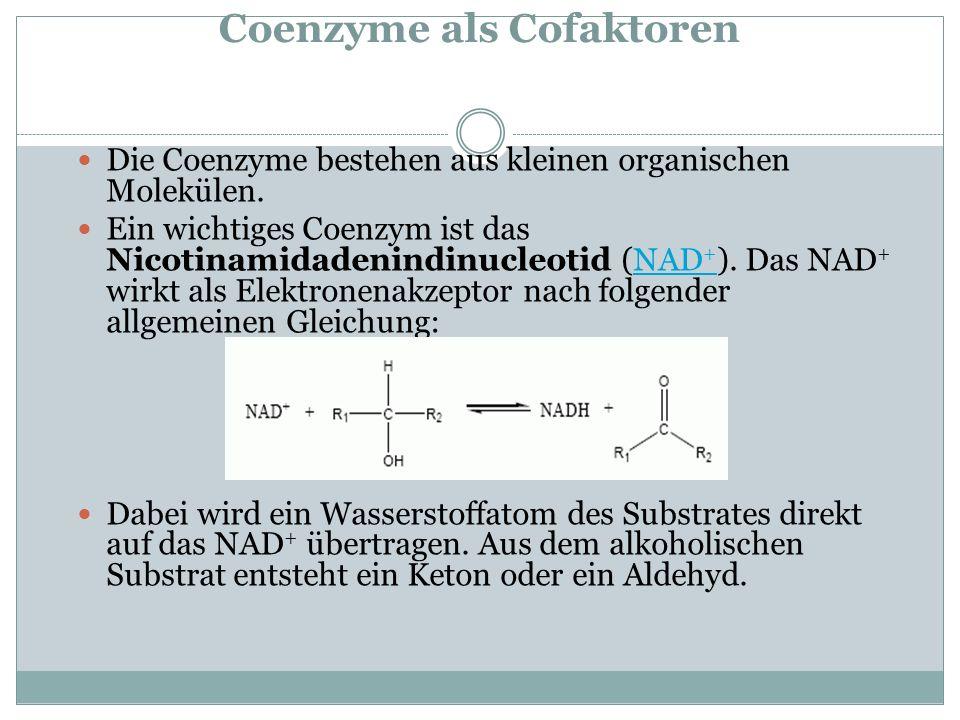 Coenzyme als Cofaktoren Die Coenzyme bestehen aus kleinen organischen Molekülen. Ein wichtiges Coenzym ist das Nicotinamidadenindinucleotid (NAD + ).