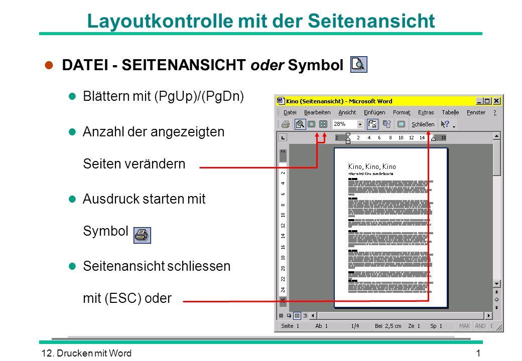 12. Drucken mit Word1 l DATEI - SEITENANSICHT oder Symbol Blättern mit (PgUp)/(PgDn) l Anzahl der angezeigten Seiten verändern l Ausdruck starten mit