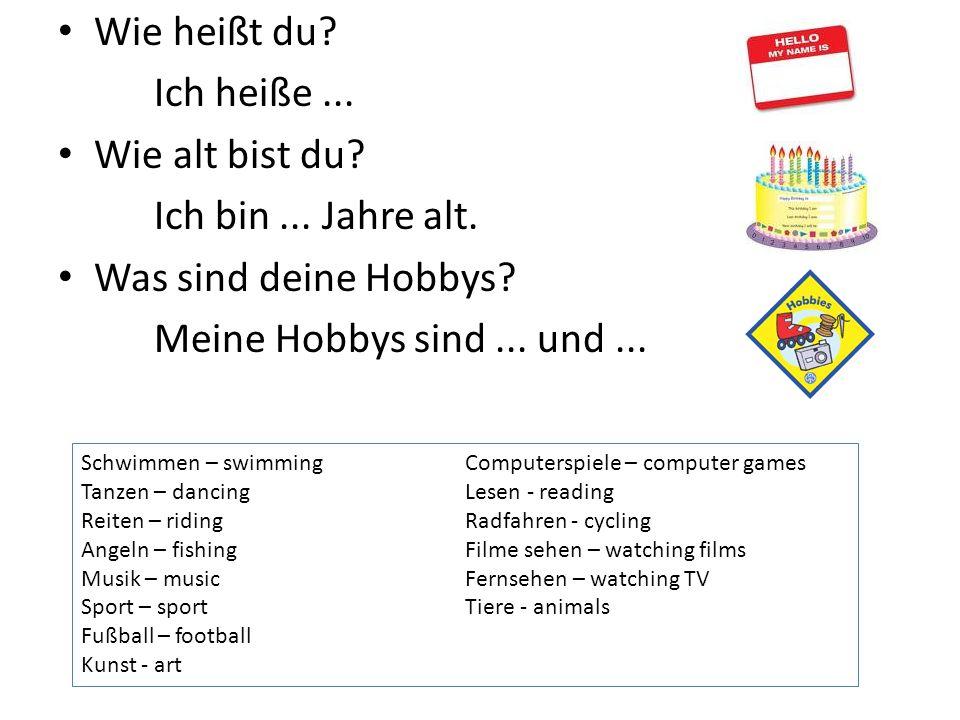 Wie heißt du? Ich heiße... Wie alt bist du? Ich bin... Jahre alt. Was sind deine Hobbys? Meine Hobbys sind... und... Schwimmen – swimmingComputerspiel