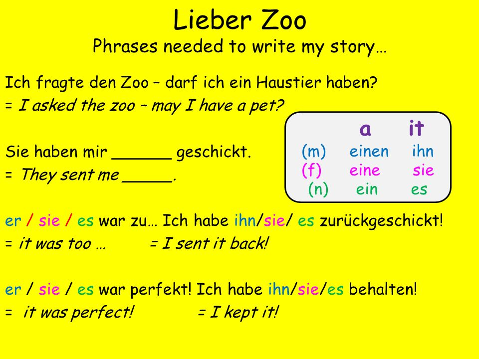Lieber Zoo Phrases needed to write my story… Ich fragte den Zoo – darf ich ein Haustier haben? = I asked the zoo – may I have a pet? Sie haben mir ___