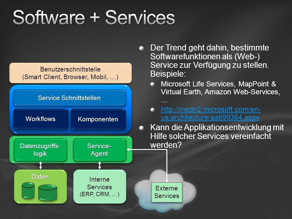 Der Trend geht dahin, bestimmte Softwarefunktionen als (Web-) Service zur Verfügung zu stellen. Beispiele: Microsoft Life Services, MapPoint & Virtual
