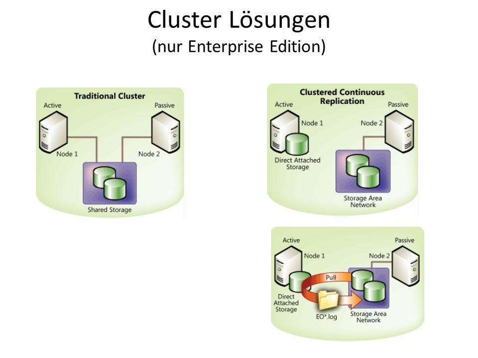 Cluster Lösungen (nur Enterprise Edition)