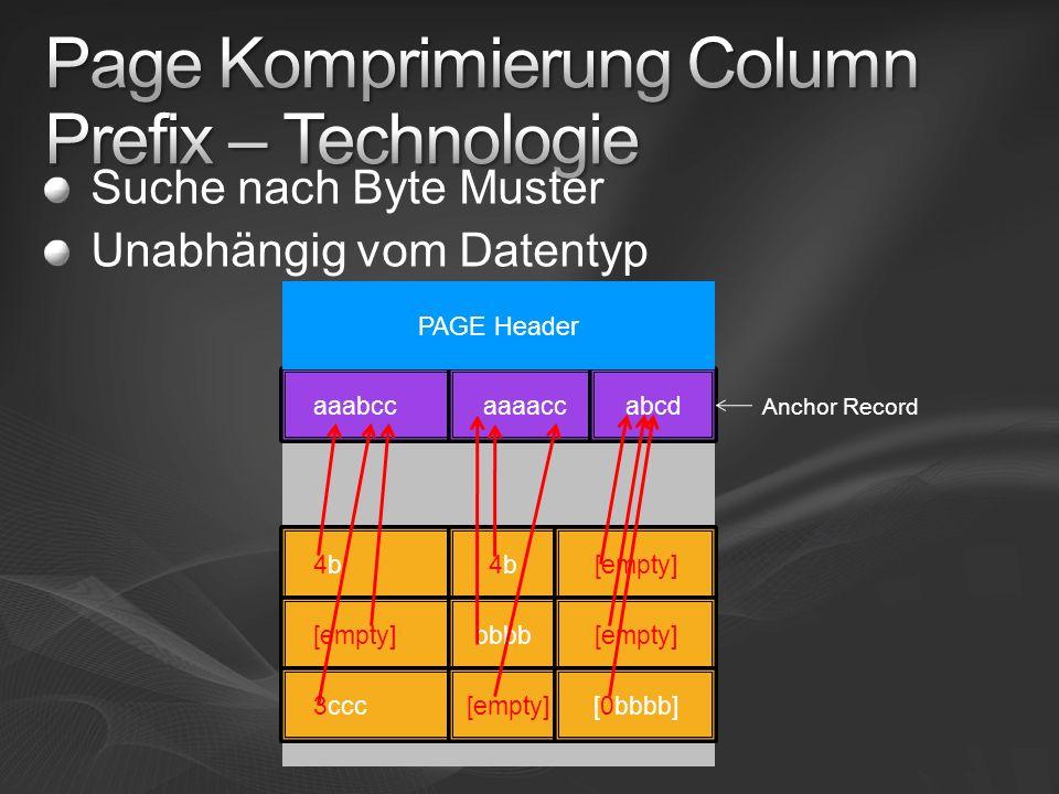 Suche nach Byte Muster Unabhängig vom Datentyp aaabbaaaababcd aaabcc[0bbbb]abcd aaacccaaaaccbbbb aaabccaaaaccabcd 4b4b4b4b[empty] bbbb[empty] 3ccc[emp