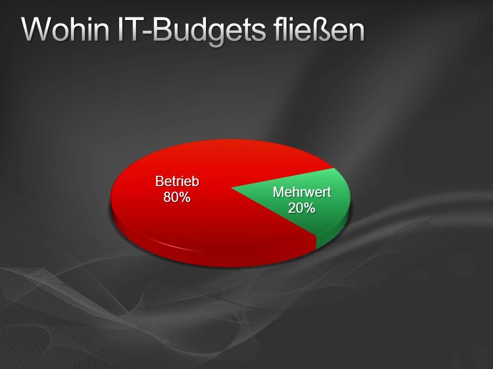 IT-Betriebskosten senken Produktivität steigern Steuerung von Geschäftsprozesse n Innovation fördern