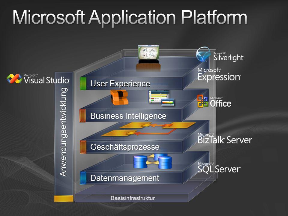 Anwendungsentwicklung Basisinfrastruktur Datenmanagement Geschäftsprozesse Business Intelligence User Experience