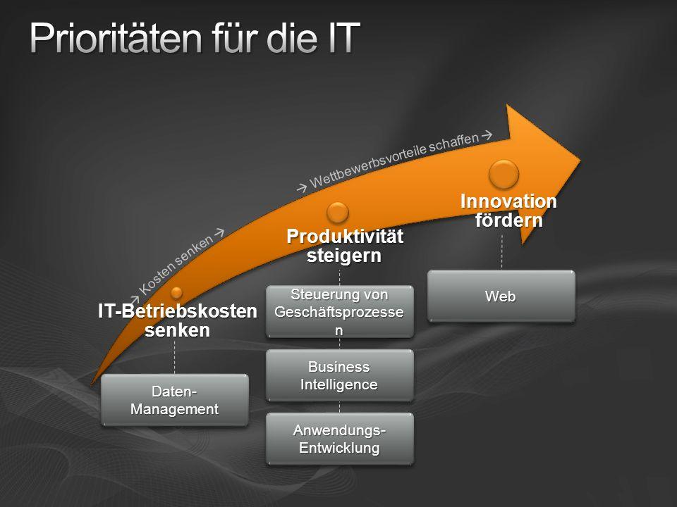 IT-Betriebskosten senken Produktivität steigern Daten- Management Steuerung von Geschäftsprozesse n Business Intelligence Anwendungs- Entwicklung WebW