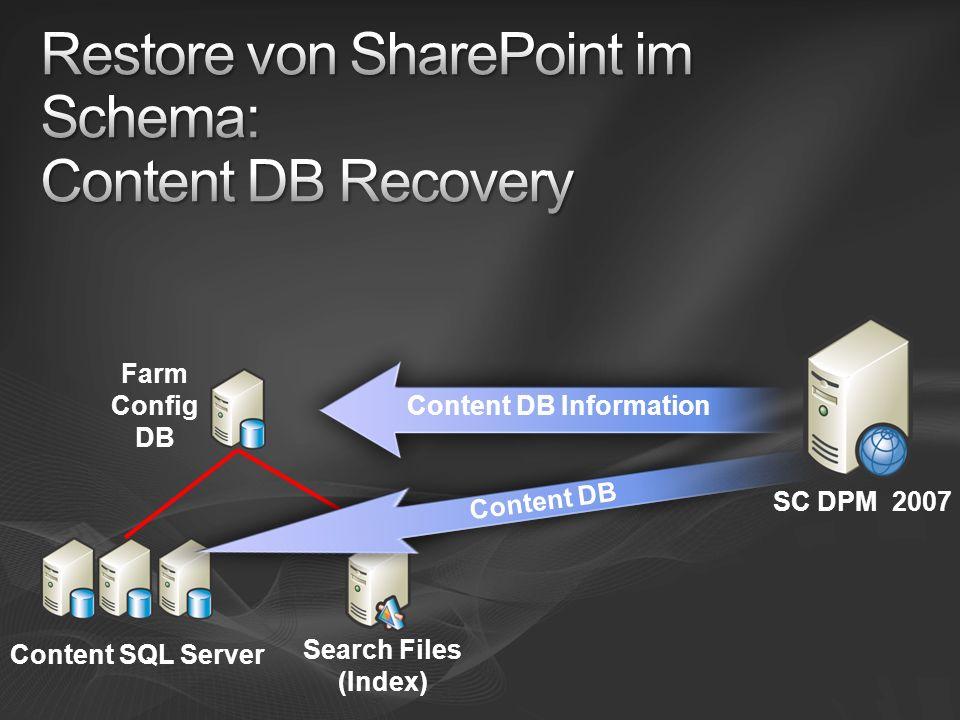 Farm Config DB SC DPM 2007 Content SQL Server Search Files (Index) Content DB Information Content DB