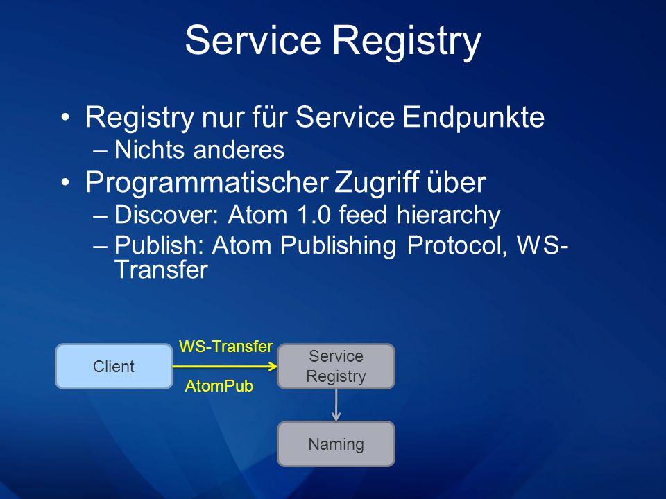 Service Registry Registry nur für Service Endpunkte –Nichts anderes Programmatischer Zugriff über –Discover: Atom 1.0 feed hierarchy –Publish: Atom Pu