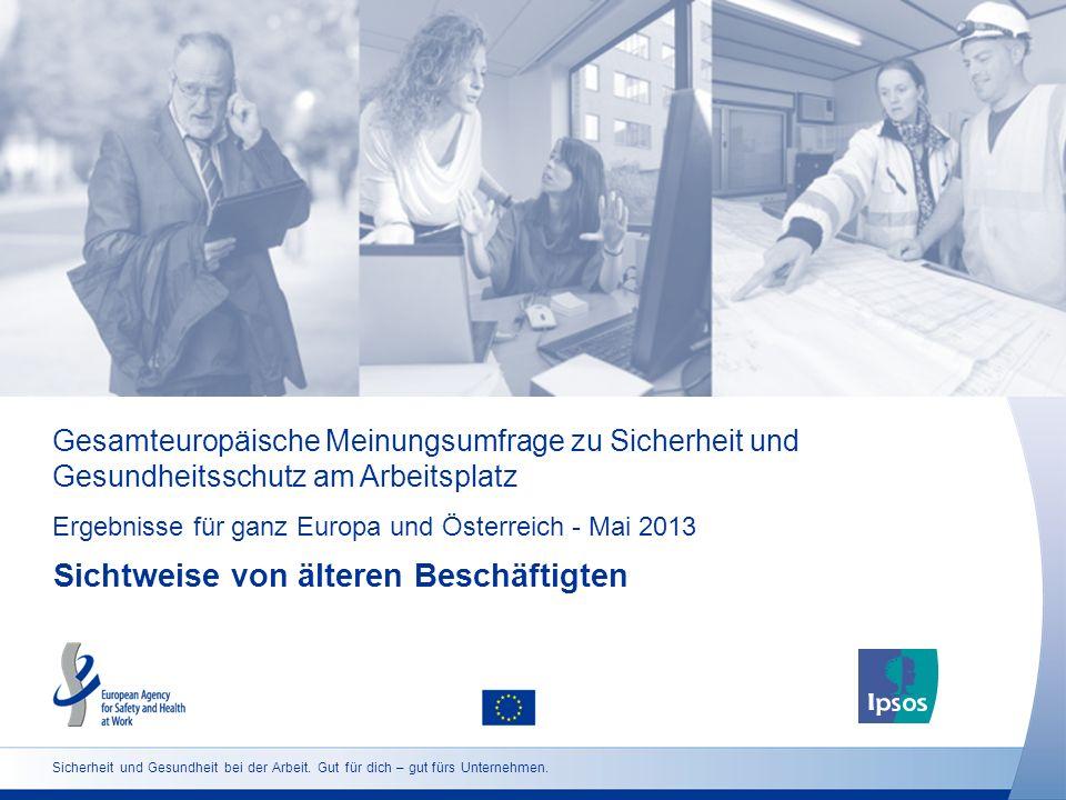 Gesamteuropäische Meinungsumfrage zu Sicherheit und Gesundheitsschutz am Arbeitsplatz Ergebnisse für ganz Europa und Österreich - Mai 2013 Sichtweise