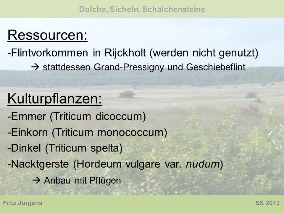 Ressourcen: -Flintvorkommen in Rijckholt (werden nicht genutzt) stattdessen Grand-Pressigny und Geschiebeflint Kulturpflanzen: -Emmer (Triticum dicocc
