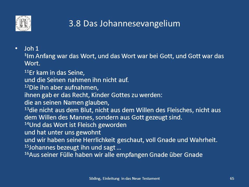 3.8 Das Johannesevangelium Joh 1 1 Im Anfang war das Wort, und das Wort war bei Gott, und Gott war das Wort. 11 Er kam in das Seine, und die Seinen na