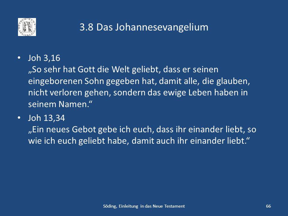 3.8 Das Johannesevangelium Joh 3,16 So sehr hat Gott die Welt geliebt, dass er seinen eingeborenen Sohn gegeben hat, damit alle, die glauben, nicht ve