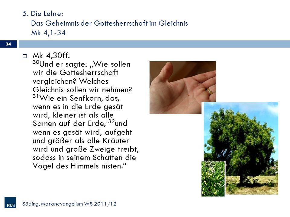 5. Die Lehre: Das Geheimnis der Gottesherrschaft im Gleichnis Mk 4,1-34 Mk 4,30ff. 30 Und er sagte: Wie sollen wir die Gottesherrschaft vergleichen? W