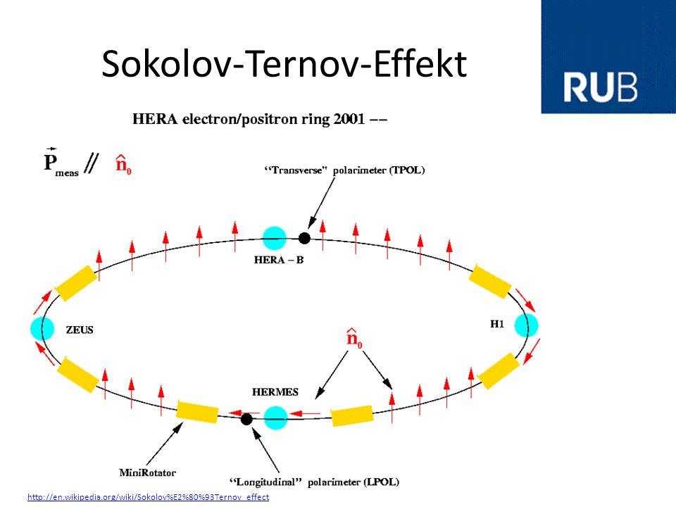 Sokolov-Ternov-Effekt http://en.wikipedia.org/wiki/Sokolov%E2%80%93Ternov_effect