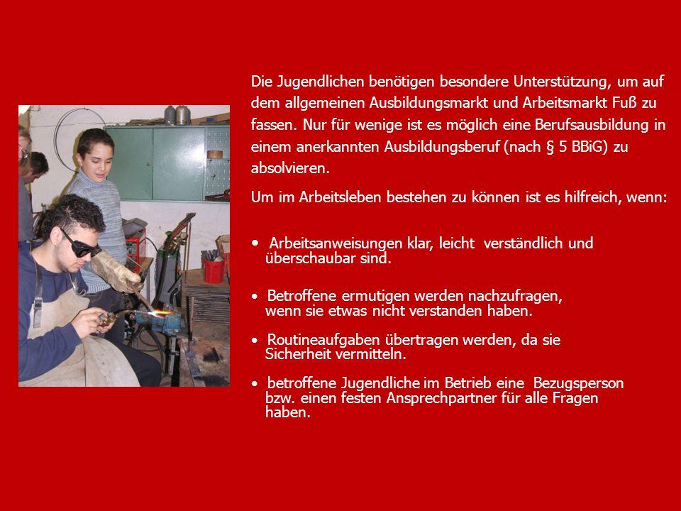 3 Die Jugendlichen benötigen besondere Unterstützung, um auf dem allgemeinen Ausbildungsmarkt und Arbeitsmarkt Fuß zu fassen. Nur für wenige ist es mö