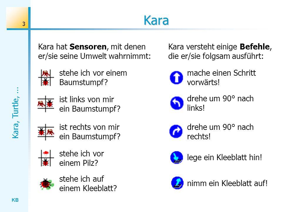 KB Kara, Turtle,... 3 Kara Kara hat Sensoren, mit denen er/sie seine Umwelt wahrnimmt: stehe ich vor einem Baumstumpf? ist links von mir ein Baumstump