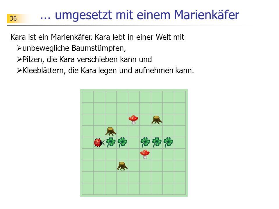 36...umgesetzt mit einem Marienkäfer Kara ist ein Marienkäfer.
