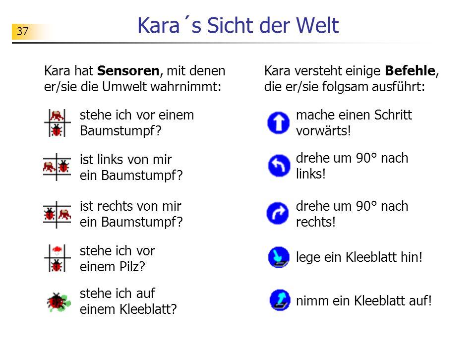 37 Kara´s Sicht der Welt Kara hat Sensoren, mit denen er/sie die Umwelt wahrnimmt: stehe ich vor einem Baumstumpf.
