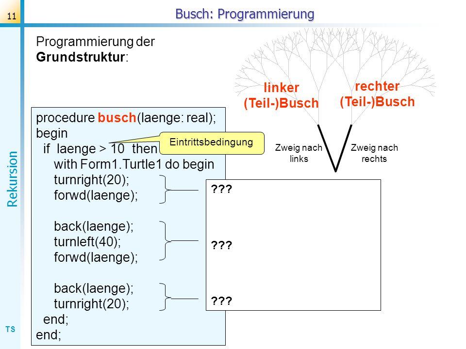 TS Rekursion 11 Busch: Programmierung rechter (Teil-)Busch linker (Teil-)Busch Zweig nach rechts Zweig nach links Programmierung der Grundstruktur: pr