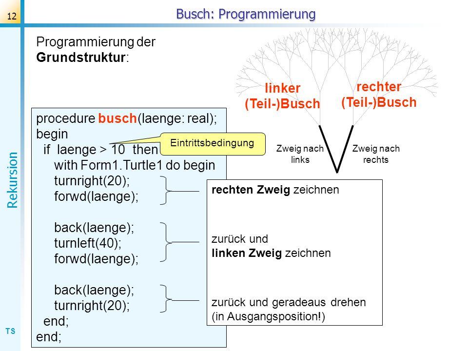TS Rekursion 12 Busch: Programmierung rechter (Teil-)Busch linker (Teil-)Busch Zweig nach rechts Zweig nach links Programmierung der Grundstruktur: pr