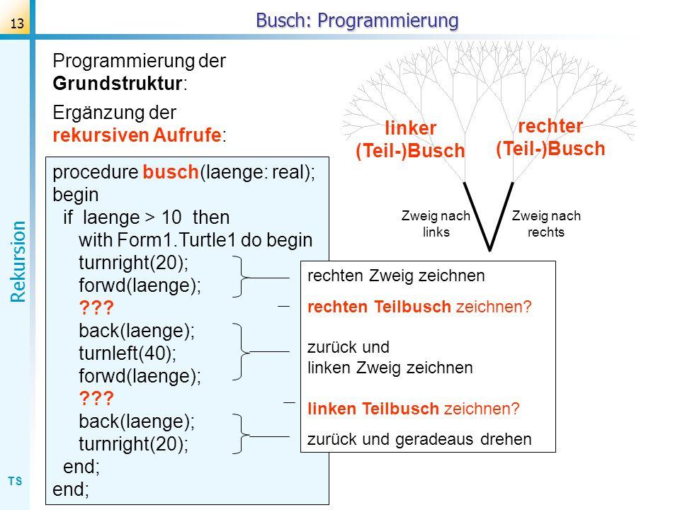 TS Rekursion 13 Busch: Programmierung Ergänzung der rekursiven Aufrufe: procedure busch(laenge: real); begin if laenge > 10 then with Form1.Turtle1 do