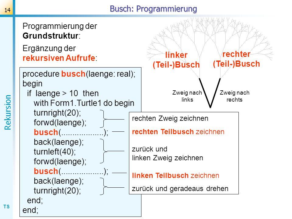 TS Rekursion 14 Busch: Programmierung procedure busch(laenge: real); begin if laenge > 10 then with Form1.Turtle1 do begin turnright(20); forwd(laenge