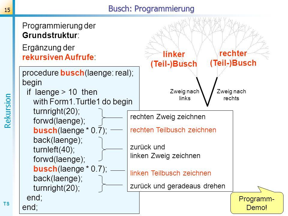 TS Rekursion 15 Busch: Programmierung procedure busch(laenge: real); begin if laenge > 10 then with Form1.Turtle1 do begin turnright(20); forwd(laenge
