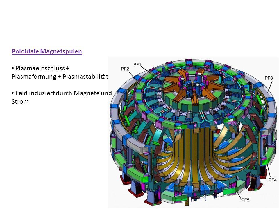Poloidale Magnetspulen Plasmaeinschluss + Plasmaformung + Plasmastabilität Feld induziert durch Magnete und Strom
