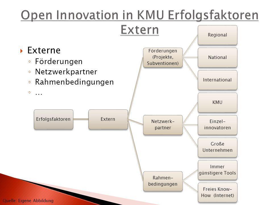 ErfolgsfaktorenExtern Förderungen (Projekte, Subventionen) RegionalNationalInternational Netzwerk- partner KMU Einzel- innovatoren Große Unternehmen R