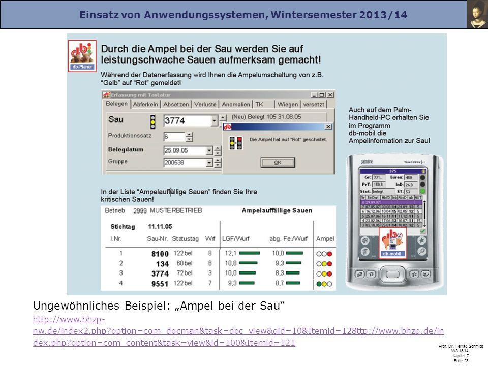 Einsatz von Anwendungssystemen, Wintersemester 2013/14 Prof. Dr. Herrad Schmidt WS 13/14 Kapitel 7 Folie 28 Ungewöhnliches Beispiel: Ampel bei der Sau