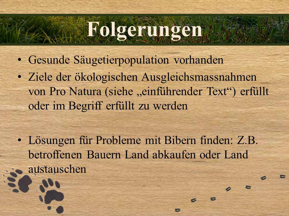 Folgerungen Gesunde Säugetierpopulation vorhanden Ziele der ökologischen Ausgleichsmassnahmen von Pro Natura (siehe einführender Text) erfüllt oder im