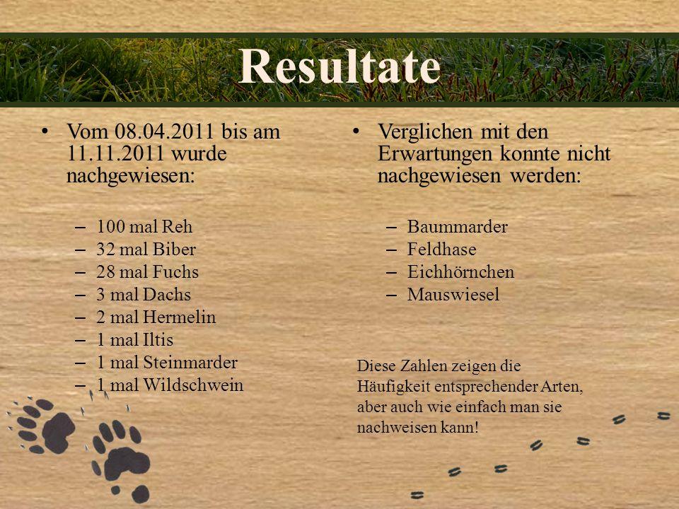 Resultate Vom 08.04.2011 bis am 11.11.2011 wurde nachgewiesen: –100 mal Reh –32 mal Biber –28 mal Fuchs –3 mal Dachs –2 mal Hermelin –1 mal Iltis –1 m